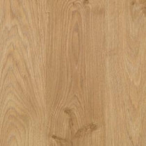 Home Decorators Collection Natural Worn Oak 8 mm Thick x 6-1/8 in. Wide x 54-11/32 in. Length Laminate Flooring (23.17 sq. ft. / case)-HDC602 204853187