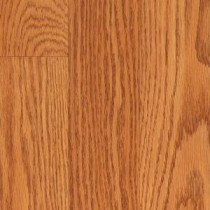 TrafficMASTER Glenwood Oak Laminate Flooring - 5 in. x 7 in. Take Home Sample-HL-349970 204859314